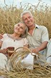 休息在夏天领域的资深夫妇 免版税图库摄影