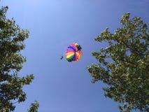 休息在天空、滑翔伞、人、一名飞行员和一次乘客飞行在天空 免版税库存照片
