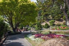 休息在惠灵顿植物园,新西兰的访客 免版税库存照片