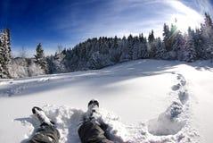 休息在雪,美好的冬天横向 图库摄影