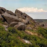 休息在领域的巨型磨石在的岩层附近 免版税库存图片