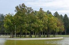 休息的普遍的北部公园与秋季老森林、长木凳和湖在Vrabnitsa区 免版税库存图片