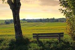 休息的长凳在乡下,日落风景 图库摄影