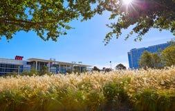 休斯敦发现绿色公园在得克萨斯 免版税库存图片