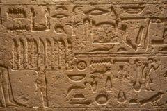 休斯敦,美国- 2017年1月12日:在墙壁上的埃及艺术被暴露在古埃及地区在国家博物馆自然 图库摄影