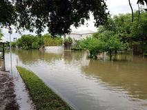 休斯敦洪水 库存图片