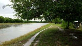 休斯敦洪水 免版税库存图片