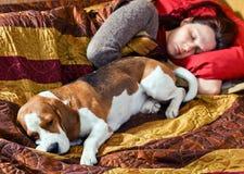 休眠的妇女和其狗 图库摄影