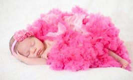 休眠的新出生的婴孩 免版税库存照片