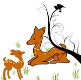 休耕的deers 免版税图库摄影