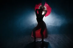 优美地跳舞在烟和雾的女孩的美丽的剪影 库存图片