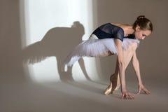 优美的芭蕾舞女演员的充分的成长画象 库存照片