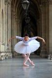 优美的芭蕾舞女演员跳舞在宫殿 库存图片