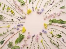 优美的花卉背景样式 免版税图库摄影
