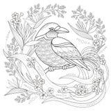 优美的鸟着色页 向量例证