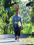 优美的巴厘语妇女在巴厘岛 库存照片