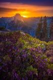 优胜美地国家公园日出冰川点 免版税图库摄影
