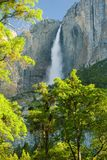 优胜美地瀑布在清楚的早晨 库存照片