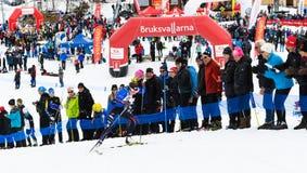 优胜者埃巴安德森, Solleftea滑雪,如果,在滑雪竞赛Fjalltoppsloppet山上面种族的结束35 km在Bruksvall 库存图片