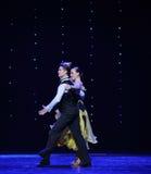 年轻伙伴国际标准舞蹈这奥地利的世界舞蹈 库存照片