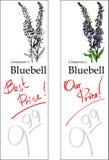 会开蓝色钟形花的草价牌二 图库摄影