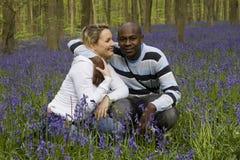 会开蓝色钟形花的草夫妇 库存照片