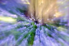 会开蓝色钟形花的草木头-抽象迅速移动的背景 库存照片