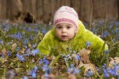 会开蓝色钟形花的草束森林女孩春天 免版税图库摄影