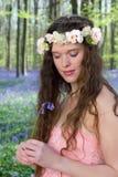 会开蓝色钟形花的草梦中情人 库存图片