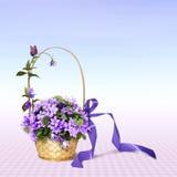 会开蓝色钟形花的草花束 库存照片