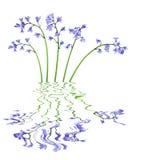 会开蓝色钟形花的草花 库存图片