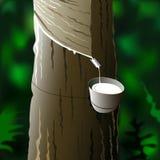 会集乳汁   皇族释放例证
