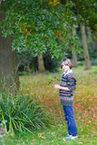 会集五颜六色的叶子的孩子画象在公园 库存照片