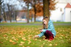 会集制作和使用的小女孩橡子在美好的秋天天 免版税图库摄影