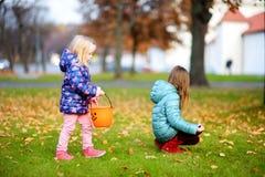 会集制作和使用的小女孩橡子在美好的秋天天 免版税库存图片