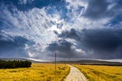 会集在浩大的黄色草地之间的远足的道路的雨云 库存图片