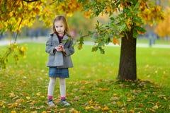 会集橡子的小女孩在秋天天 库存图片