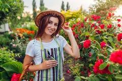 会集花的年轻女人在庭院里 拿着切掉的女孩玫瑰pruner r 免版税库存图片
