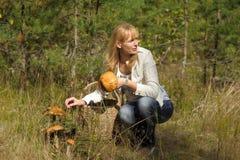 会集蘑菇的少妇在森林里 库存照片