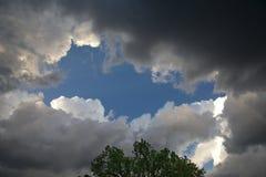 会集暴风云和日落光与树 免版税库存照片