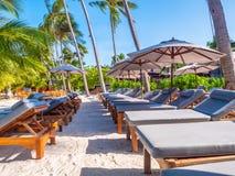 伞和椅子在海滩和海海洋有蓝天的 库存照片