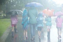 伞在雨中在一朦胧的天 免版税库存图片