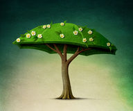 伞形树 库存图片