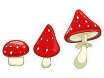 伞形毒蕈毒性蘑菇传染媒介例证 免版税库存图片