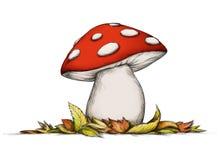 伞菌的例证在秋天 免版税库存图片