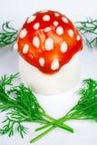 伞菌蛋蝇 库存照片