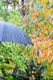 伞细节  免版税库存照片