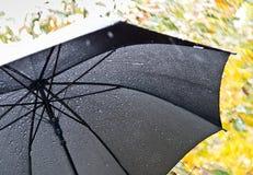伞细节  库存图片