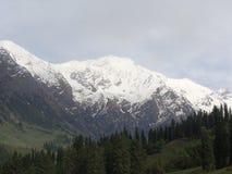伟大的喜马拉雅山 图库摄影