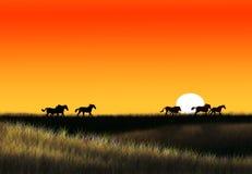 伟大的干草原 库存图片
